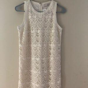 Loft Womens Lace Dress Size 0 NWT